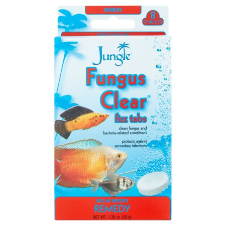 Jungle Fungus Clear Tank Buddies, 8 ct