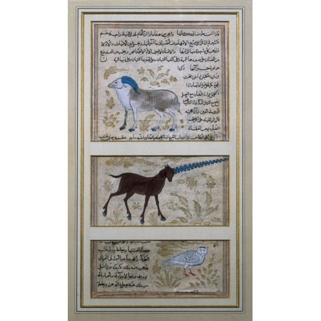 The Three Symbolic Animals Of Alchemy Islamic Art Miniature Painting France Paris National Library  AisaEverett Collection Poster Print