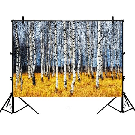 YKCG 7x5ft Birch Tree of Life Autumn Birch Grove among Orange Grass Photography Backdrops Polyester Photography Props Studio Photo Booth Props