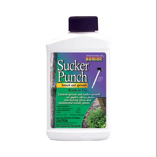 BONIDE PRODUCTS INC Sucker Punch Plant Growth Regulator, Ready-to-Use Brush Top, 8-oz.