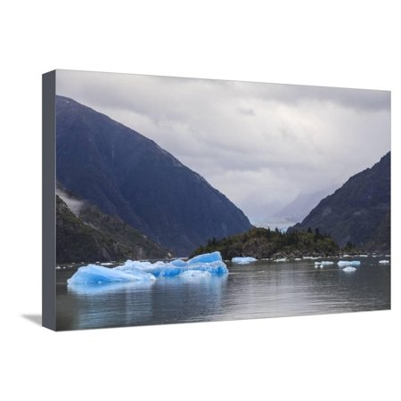 Blue icebergs and face of Sawyer Glacier, mountain backdrop, Stikine Icefield, Tracy Arm Fjord, Ala Stretched Canvas Print Wall Art By Eleanor