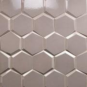 Magen Leveled-Hex Gray Polished Ceramic Hexagon Tile