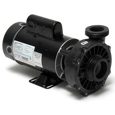 Waterway 3420410-10 Hi-Flo Side Discharge 1HP Dual-Speed Spa Pump, 115V