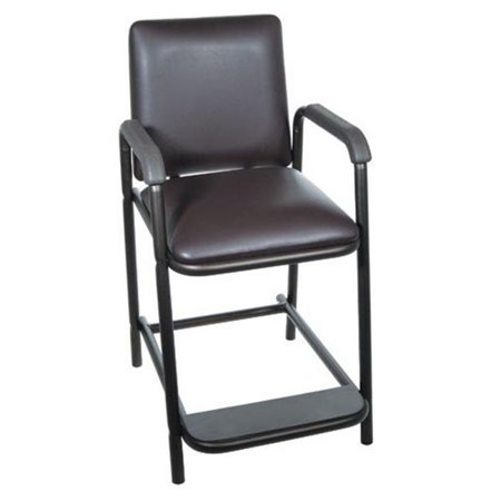 Awesome Complete Medical 11601 Hip Chair Deluxe Home Interior And Landscaping Sapresignezvosmurscom