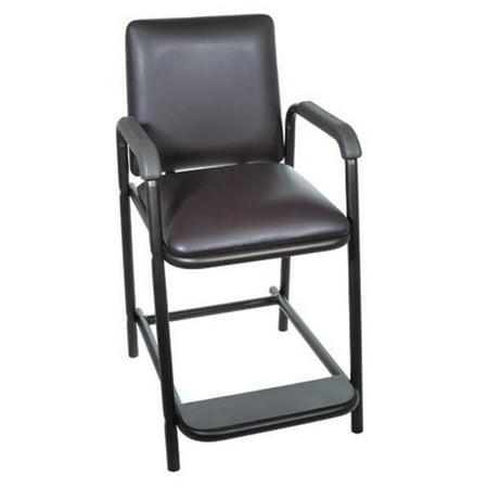 Magnificent Complete Medical 11601 Hip Chair Deluxe Interior Design Ideas Oteneahmetsinanyavuzinfo