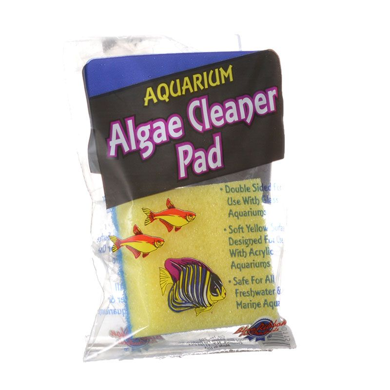 Blue Ribbon Double Sided Algae Cleaning Pad Algae Cleaning Pad - Pack of 10