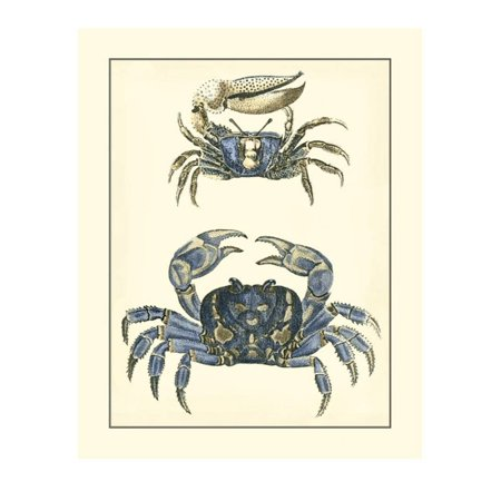 Antique Blue Crabs II Print Wall Art By Vision Studio