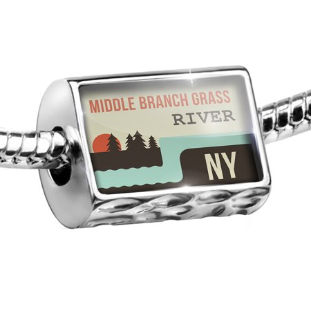 Bead USA Rivers Middle Branch Grass River - New York Charm Fits All European Bracelets - Grass Photo Charm