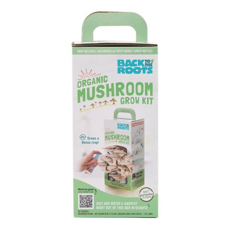 Back to the Roots Organic Oyster Mushroom Growing Kit