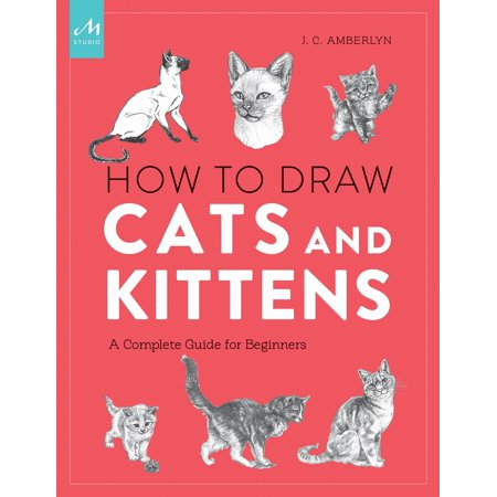 How to Draw Cats and Kittens : A Complete Guide for Beginners - Draw Cat Face Halloween