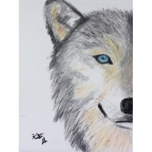 Judith Raye Paintings LLC Woodland Wolf by Judith Raye Painting Print on Canvas