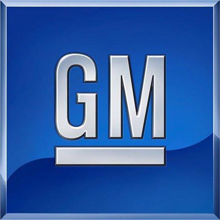 General Motors GM Accessories 84106507 Crew Cab 6-Inch Rectangular Assist Steps in Chrome