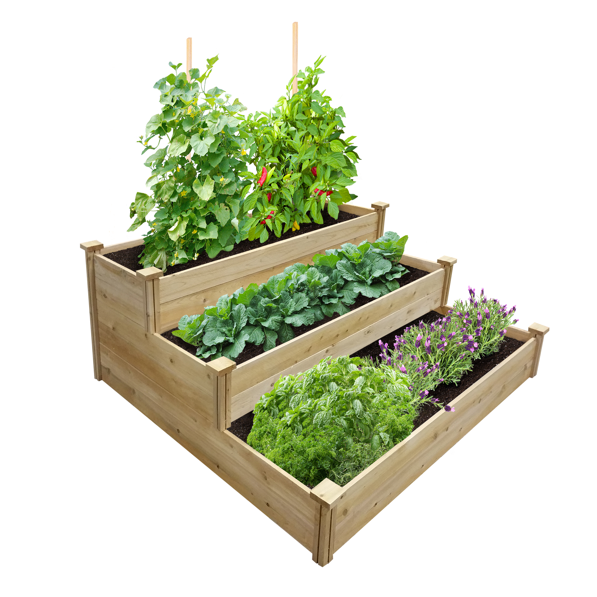 Greenes Value 3-Tiered Cedar Raised Garden Bed 4 ft. x 4 ft. x 21 in., Unfinished (.5-.625 in. thick)