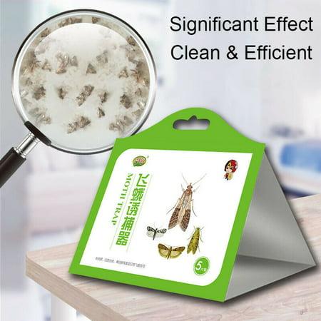 5x/pack Pantry Kitchen Food Moth Pheromone Attractant Moth Killer Moth Trap YF thumbnail
