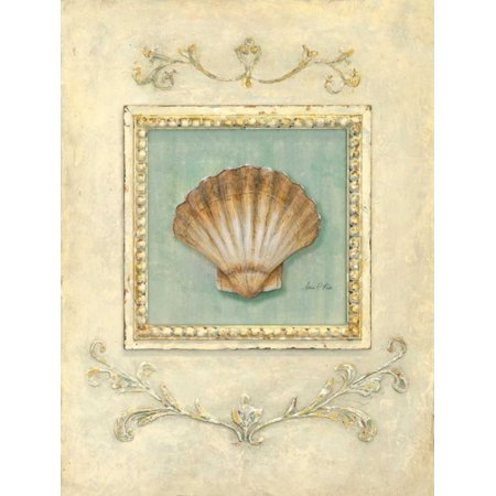 Classic Scallop (Classic Scallop Poster Print by Arnie Fisk )