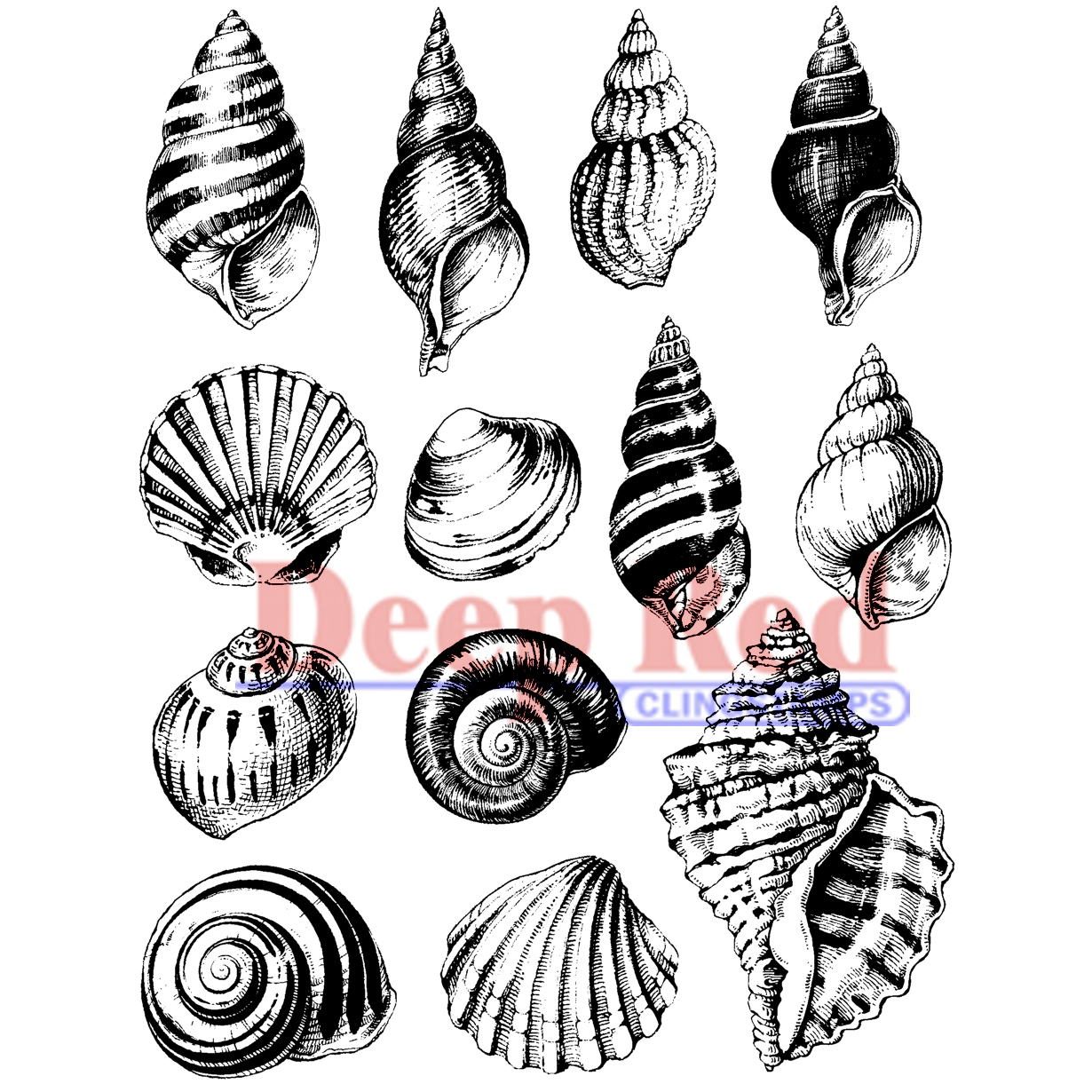 "Deep Red Cling Stamp 3""X4""-Seashell"