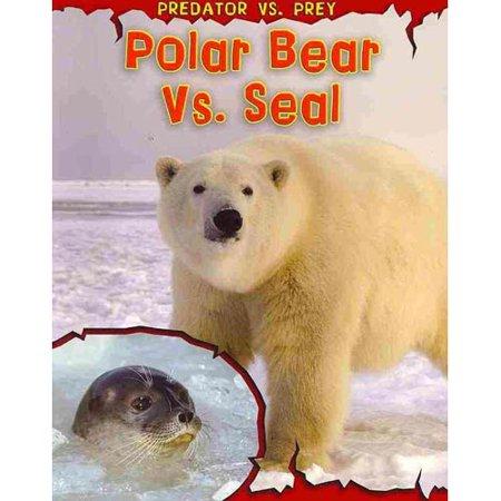 Polar Bear Vs  Seal