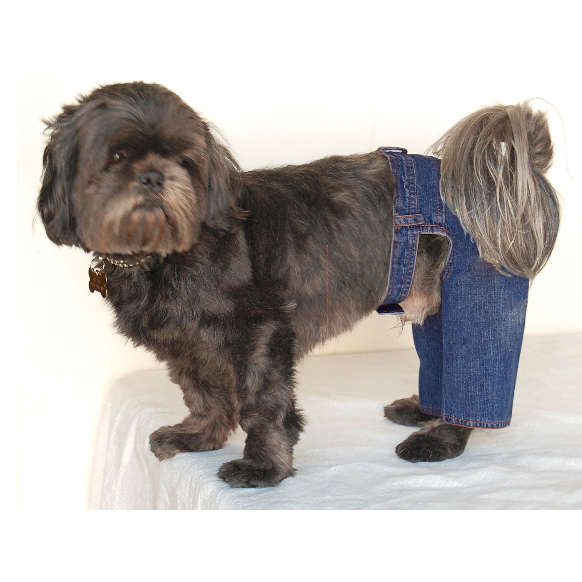 Blue Denim Jeans Pants For Puppy Dog Clothing Clothes - Small (Gift for Pet)