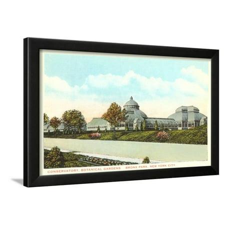 Botanical Gardens, Bronx Park, New York City Framed Print Wall