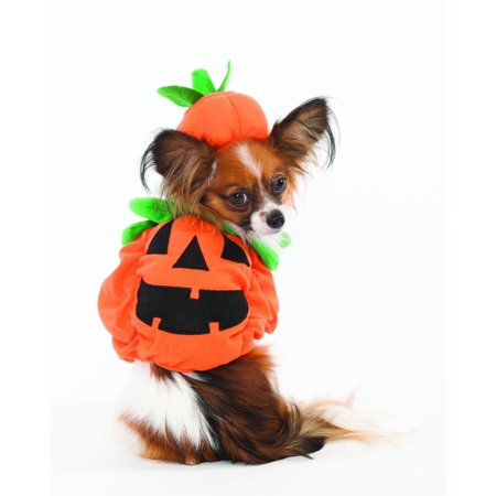 Halloween Pumpkin Costume for Dogs, X-Small, Stuffed body adds dimension By Fashion Pet](Body Painting Per Halloween)