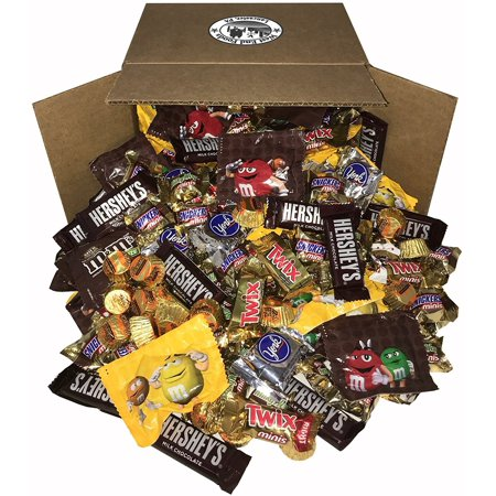 Chocolate Candy Assorted (8 Pounds) Snickers Bar, M&Ms Milk, Peanuts, Reese's, Milky Way, Twix, Hershey, York Mini Size Bulk Snacks for Halloween](Unwrapped Candy Halloween)