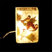 DecorFreak Lighted Square Glass Jar - Two Sparrows