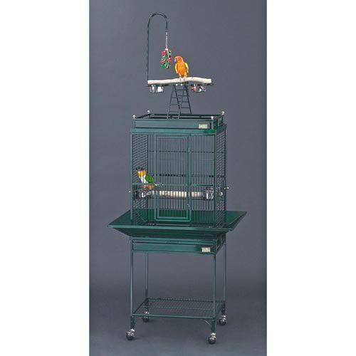Avian Adventures Nina Playtop Bird Cage