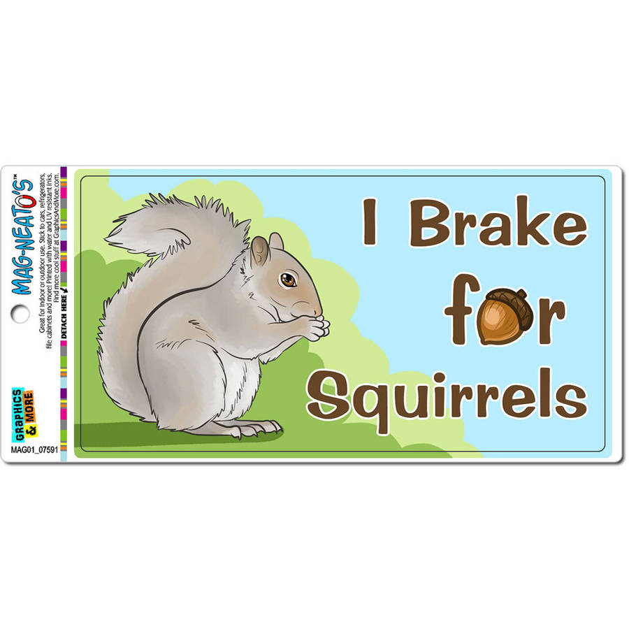 Tool Box Magnet Ad Funny Squirrels In Bird House Cold Outside  Refrigerator