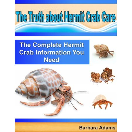 Halloween Hermit Crab Care (The Truth About Hermit Crab Care: The Complete Hermit Crab Information You Need -)
