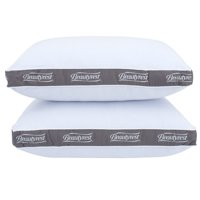 Beautyrest Silver Luxurious Spa Comfort Pillow Set of 2,Multiple Sizes