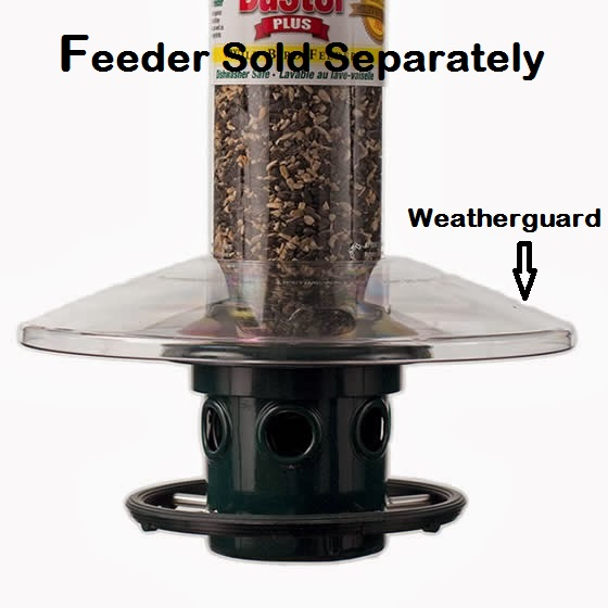Brome Squirrel Buster Plus Weatherguard, Clear, 1026