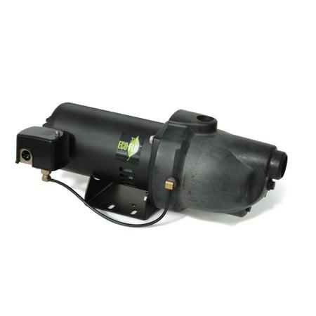 Shallow Well Jet Pump (1 HP Plastic Shallow Well Jet Pump )