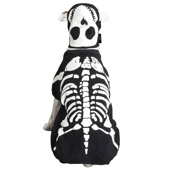 Casual Canine Glow Bones Costume, Size: SMALL