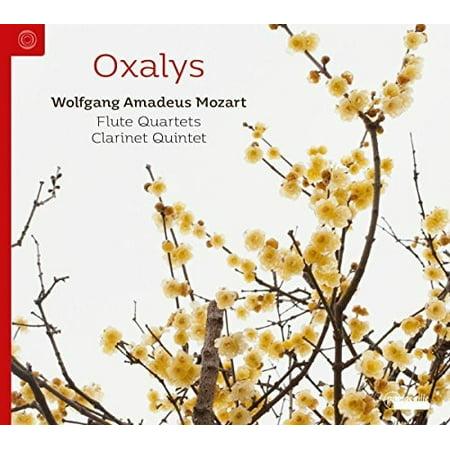 Mozart Oboe Quartet (Flute Quartets & Clarinet Quintets (CD))