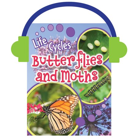 Butterflies and Moths Insect Life Cycles