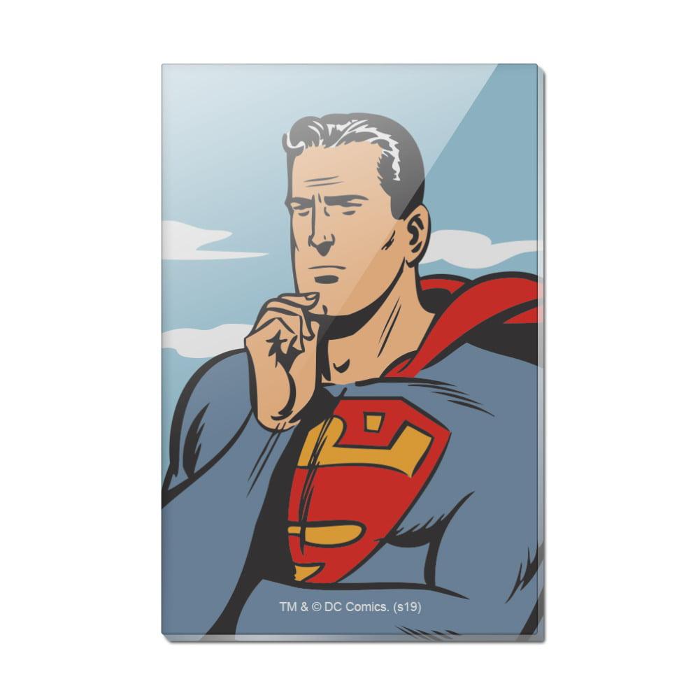 Warner Bros Superman Logo Magnet Official DC Comics Magnet NEW