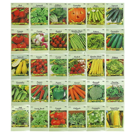 30 Packs Variety Deluxe Vegetable Seeds Create a Deluxe Garden! All Seeds are Heirloom, 100% Non-GMO! by 30 Different Varieties, Includes (30) - Different.., By Black Duck