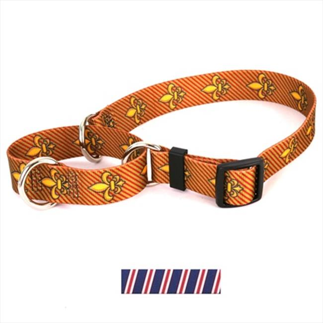 Yellow Dog Design Team Spirit and Martingale Collar - Small