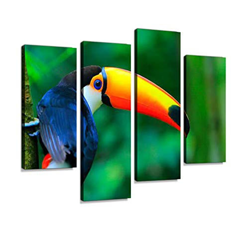 Canvas Wall Paintings Picture Parrot Poster Wall Art for Office Home Decor