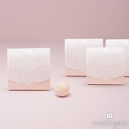 Weddingstar 4432-05 Pretty Lace Favor Box - Blush