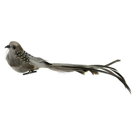 Feathered Bird Ornament - 9.5