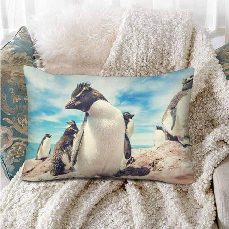 GCKG Penguins Blue Sky Pillow Cases Pillowcase 20x30 inches - image 1 de 4