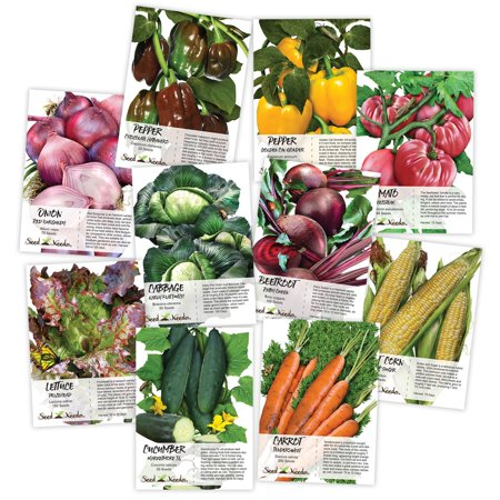 Heirloom Flower Bulbs - Heirloom Vegetable Seed Packet Assortment (10 Individual Seed Packets) Non-GMO Seeds by Seed Needs