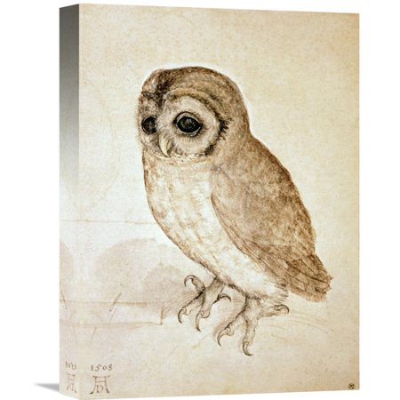 Global Gallery 'Screech Owl' by Albrecht Durer Painting Print on Wrapped Canvas
