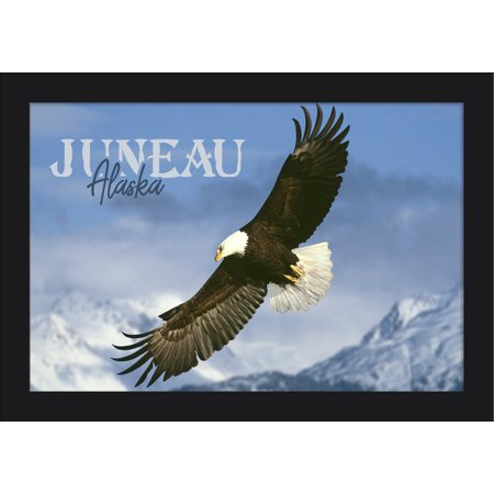 Juneau, Alaska - Eagle Soaring - Lantern Press Photography (James T. Jones) (18x12 Giclee Art Print, Gallery Framed, Black Wood)
