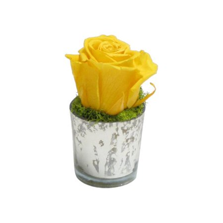 Bougainvillea Faux Reindeer Moss and Rose in Mercury Glass Votive