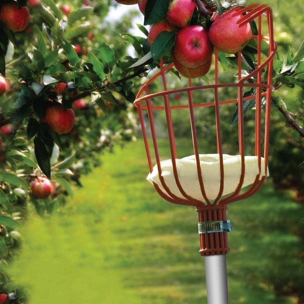 Ohuhu Fruit Picker Harvester with Light-weight Aluminum Telescoping ...