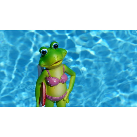 Canvas Print Frog Decorative Items Water Holiday Summer Stretched Canvas 10 x - Holiday Items