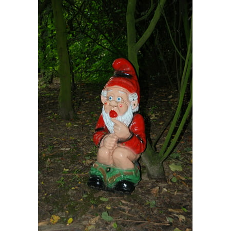 Framed Art for Your Wall Garden Gnome Forest Wc Fairy Tale Toilet Gnome 10x13 Frame - Scary Gnomes For Sale