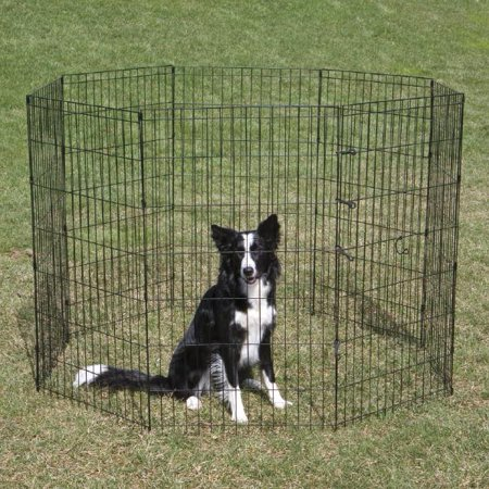 Proselect Exercise Pen - Proselect Crate Appeal Ex Pen 36in Blk